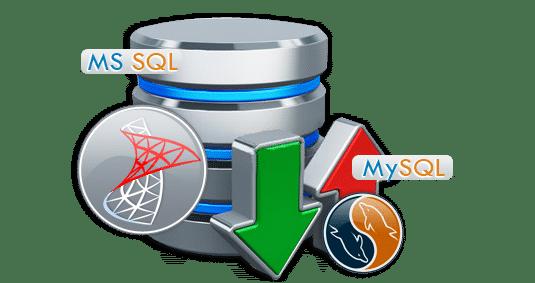 dedicated server hosting companies uae