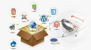 custom-developed-e-commerce-website-development-dubai